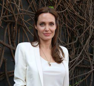 Angelina Jolie fait appel à deux nouveaux avocats pour obtenir la garde exclusive de ses six enfants.