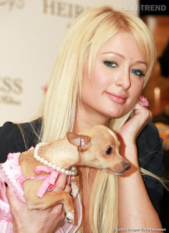 Paris Hilton, reine du ridicule, affuble son chien d'un collier de perles et d'une robe rose. Ainsi, elle a une amie qui partage son mauvais goût.