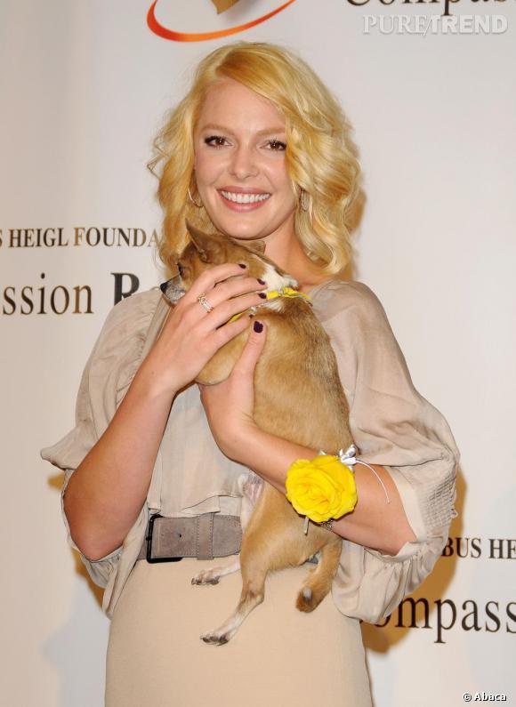 Lorsque Katherine Heigl a les cheveux jaunes... elle opte pour un chien jaune.