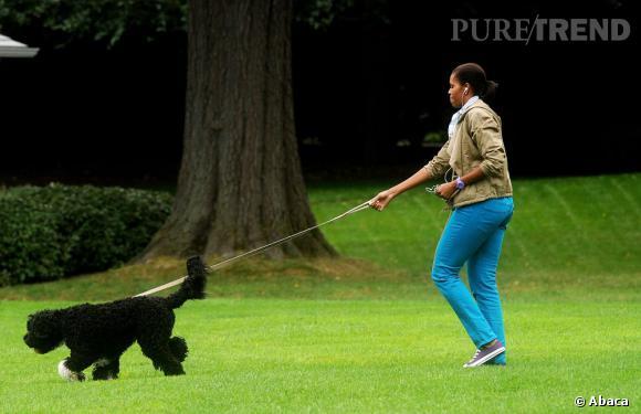 Son chien la mène par le bout du nez.