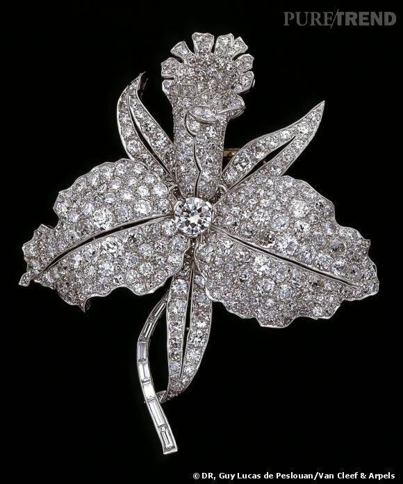 Broche Orchidée, 1928       Platine et diamants.   Collection Van Cleef & Arpels