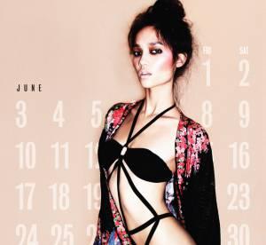2012 : des calendriers hot et sexy