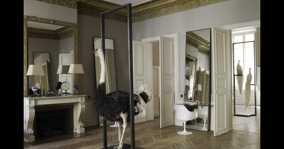 les meilleurs coloristes de paris le salon david mallet - Meilleur Coloriste Paris