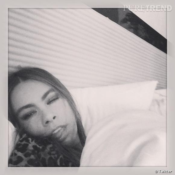 Sofia Vergara était malade lors de la soirée des Oscars !
