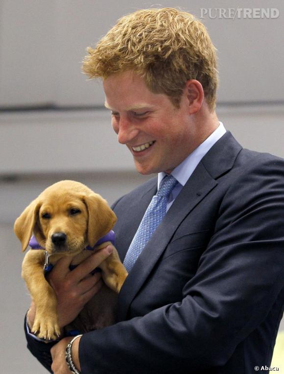 Le prince Harry est trop heureux à l'idée de devenir tonton : il aurait déjà annoncé à tout le monde que Kate Middleton et le prince William attendaient un garçon !