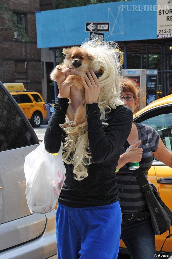 Amanda Bynes, un bouclier canin dans les rues de New York.