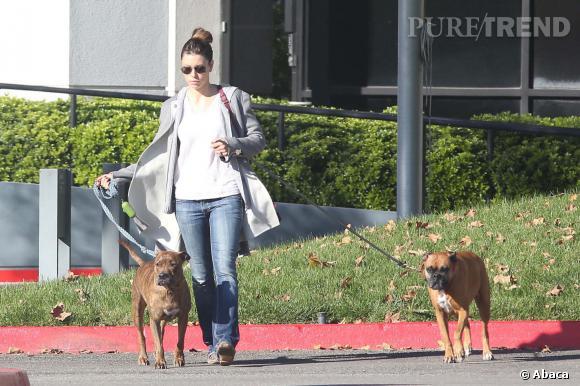 Jessica Biel s'occupe de ses chiens, c'est déjà pas mal. De là à avoir des bébés...