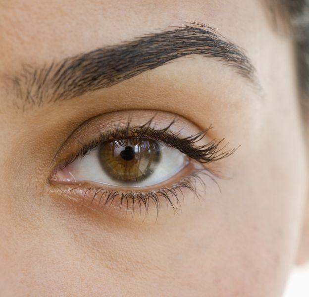 Les sourcils bien entretenus donnent du caractère au regard.