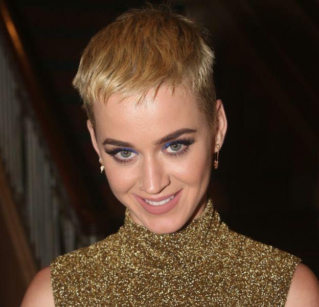Katy Perry et sa nouvelle coupe font débat.