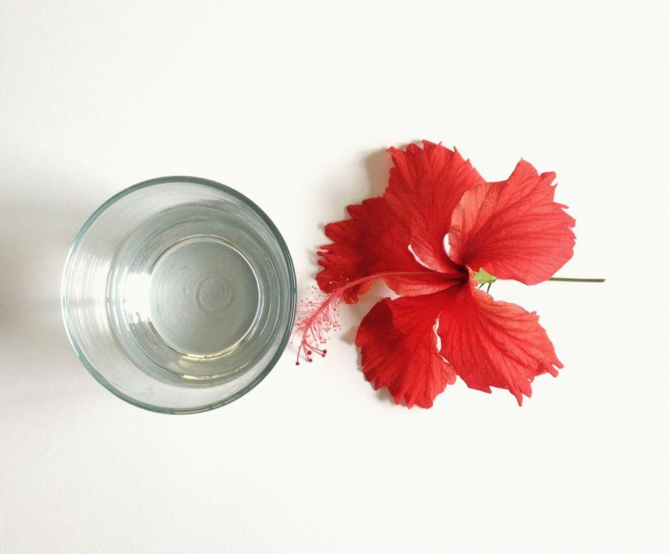 l'hibiscus : ses 3 bienfaits pour les cheveux et la peau
