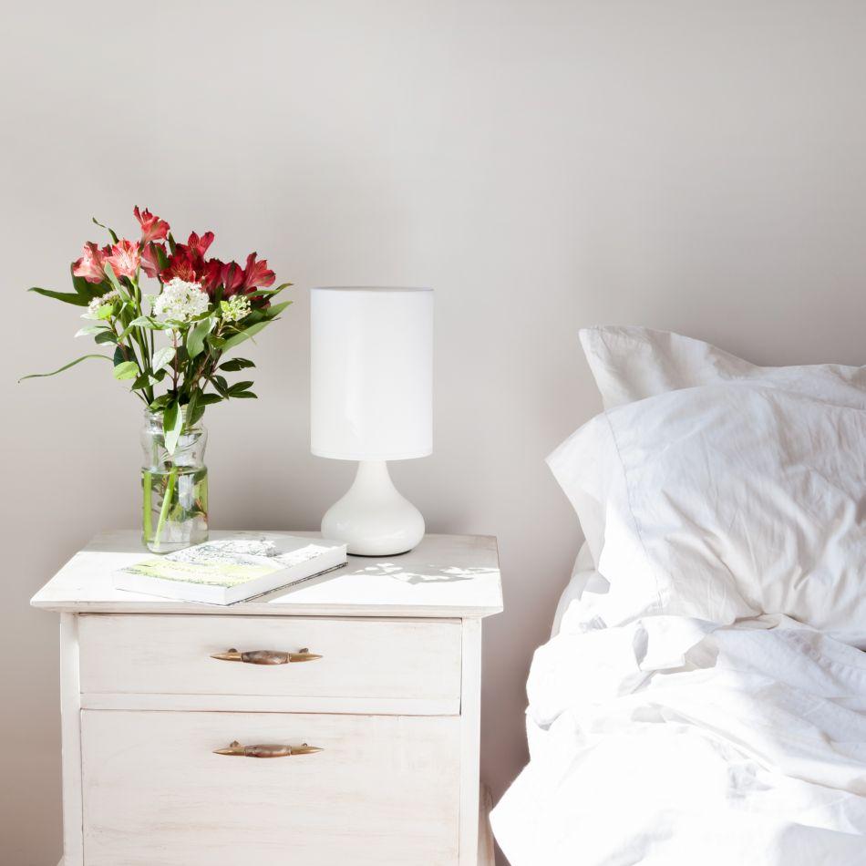 5 plantes mettre dans sa chambre pour mieux dormir. Black Bedroom Furniture Sets. Home Design Ideas