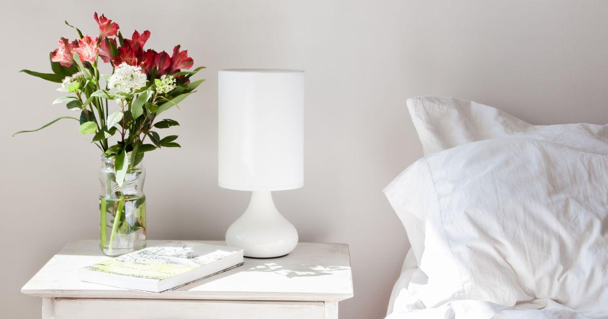 5 plantes mettre dans sa chambre pour mieux dormir puretrend. Black Bedroom Furniture Sets. Home Design Ideas