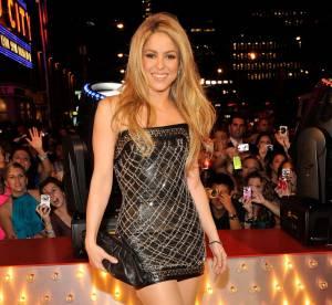 Shakira et Pink ont choisi la même robe pour la soirée MTV !