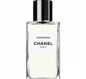 Les parfums de l'été...