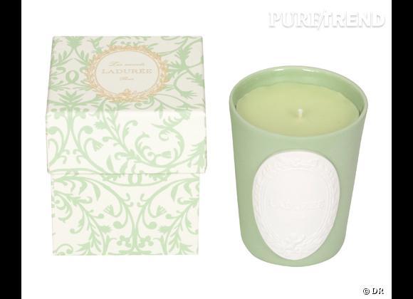 Les bougies parfumées : le bon shopping      Ladurée    Bougie Amandine (Amande), 42 €
