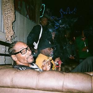 Fini Snoop Dogg le rappeur, Lion se lance dans le reggae...