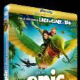 """Le DVD : """"Epic"""".    Pourquoi lui ? Une nouvelle production de """"Blue Sky"""" (à qui l'on doit """"l'Age de glace"""") qui plaira aussi bien aux petits et grands.    Le prix : 24.99 € le blu-ray."""