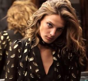 Daria Werbowy est le visage de la campagne de l'Automne-Hiver 2013/2014 de Diane von Furstenberg.