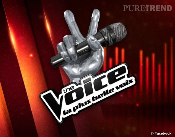 The Voice 3 : qui sont les chouchous des battles ?
