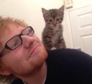 Ed Sheeran nous propose un selfie qui fonctionne à tous les coups : en duo avec un chaton !