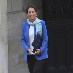 Ségolène Royal a été nommée Ministre de l'Écologie, du Développement Durable et de l'Énergie dans le gouvernement Valls.