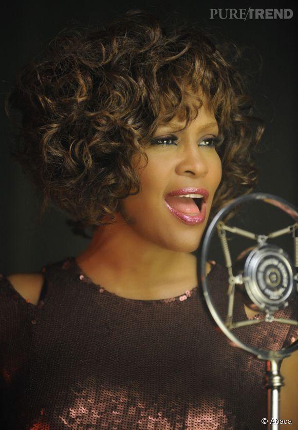 La chaîne Lifetime diffusera un téléfilm consacré à la vie de Whitney Houston.