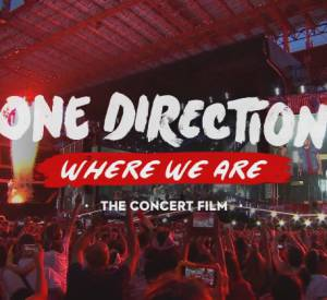 """Where We Are Tour"", la tournée des One Direction au cinéma les 11 et 12 octobre 2014."