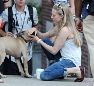 Amanda Seyfried, sa passion des chiens la suit même en tournage.
