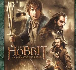 Le Hobbit, How I Met Your Mother : nos DVD coups de coeur de novembre