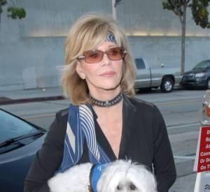 Jane Fonda avec son chien de sortie au Craig's Restaurant de Los Angeles le 21 juin 2015.