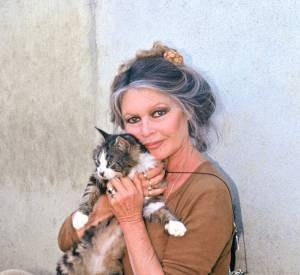 Brigitte Bardot est une fervente militante de la cause animale.