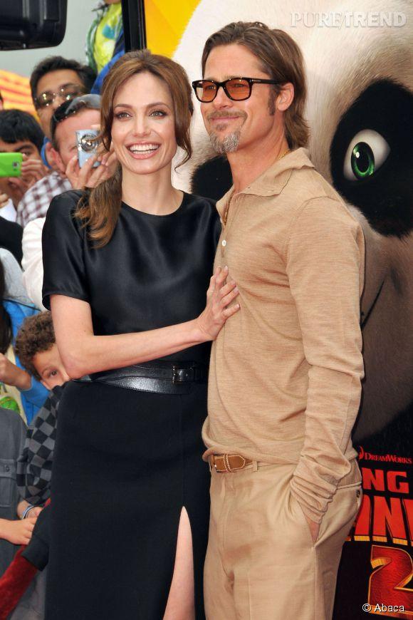 Angeline Jolie et Brad Pitt ont adopté trois bébés guépards.