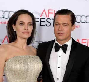 """Brad Pitt et Angelina Jolie : """"Nous avons des problèmes comme tous les couples"""""""