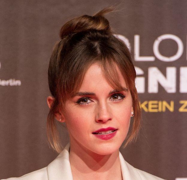 Emma Watson va consacrer l'avenir à son développement personnel et aux causes qu'elle défend.