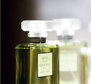 ADN d'un parfum : le Chanel N°19