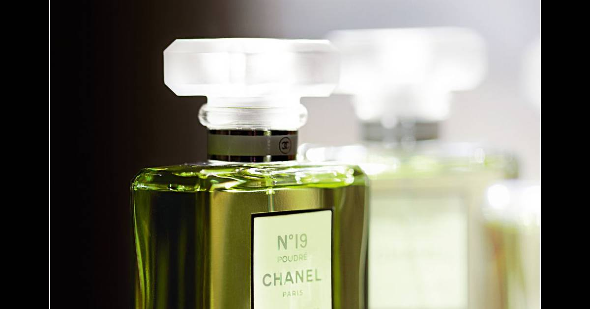 Adn Dun Parfum Le Chanel N19 Puretrend