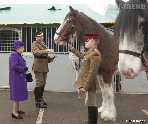 Queen Elizabeth II ne manque jamais une visite d'écurie comme ici à la caserne de Combermere à Windsor.