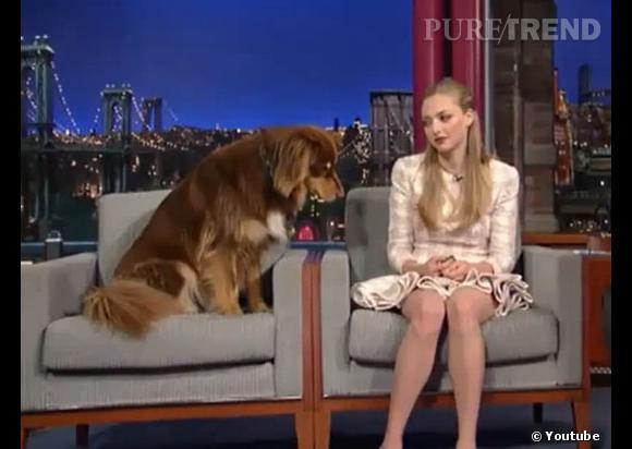 Amanda Seyfried l'avoue : son chien et elle sont co-dépendants !