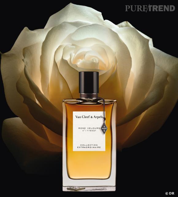 Les nouveaux parfums de la rentrée 2013    Eau de parfum Rose Velours de Van Cleef & Arpels, 120 € les 75 ml   Disponible le 1 octobre 2013 en exclu au Printemps