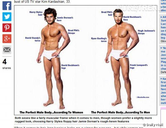 L'homme idéal est musclé voire très musclé, selon qu'on demande son envie à la gent féminine ou masculine