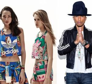 Adidas : Pharrell, TopShop, The Farm Company, la marque se réinvente