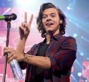 Harry Styles joue les cupidons et aide une demande en mariage en plein concert