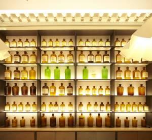 Musée du parfum : 5 raisons d'aller visiter le tout nouveau musée Fragonard