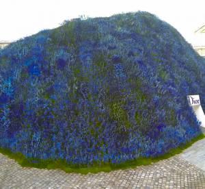 Le dôme de 400 000 fleurs, Rihanna... zoom sur le défilé Dior