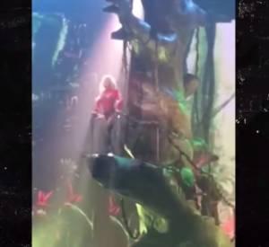 Britney Spears s'est retrouvée coincée dans un arbre géant.
