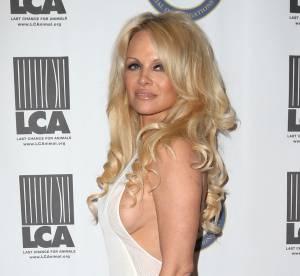 Pamela Anderson pose seins nus sur Instagram et affole la Toile !