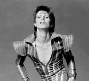 David Bowie s'est éteint à l'âge de 69 ans.