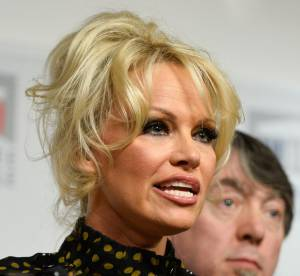 """Pamela Anderson répond aux députés français : """"J'ai un cerveau !"""""""