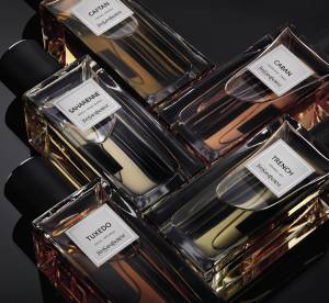 Yves Saint Laurent, Mugler, Armani : à chaque marque son parfum ultra luxe