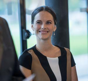Sofie de Suède, sans son mari ni son fils Alexander, pour une journée au musée.